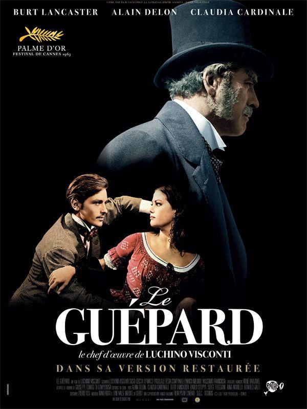 Jaquette du film Le Guépard