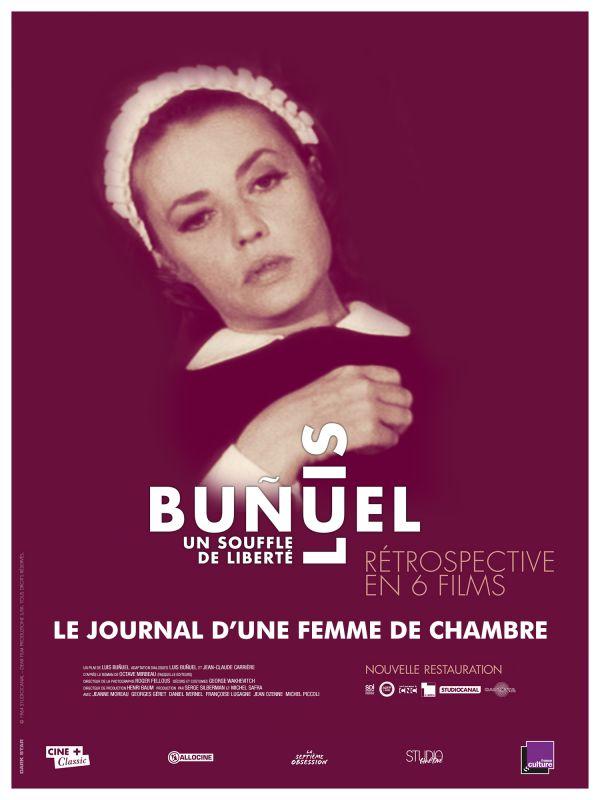 Jaquette du film Le Journal d'une femme de chambre